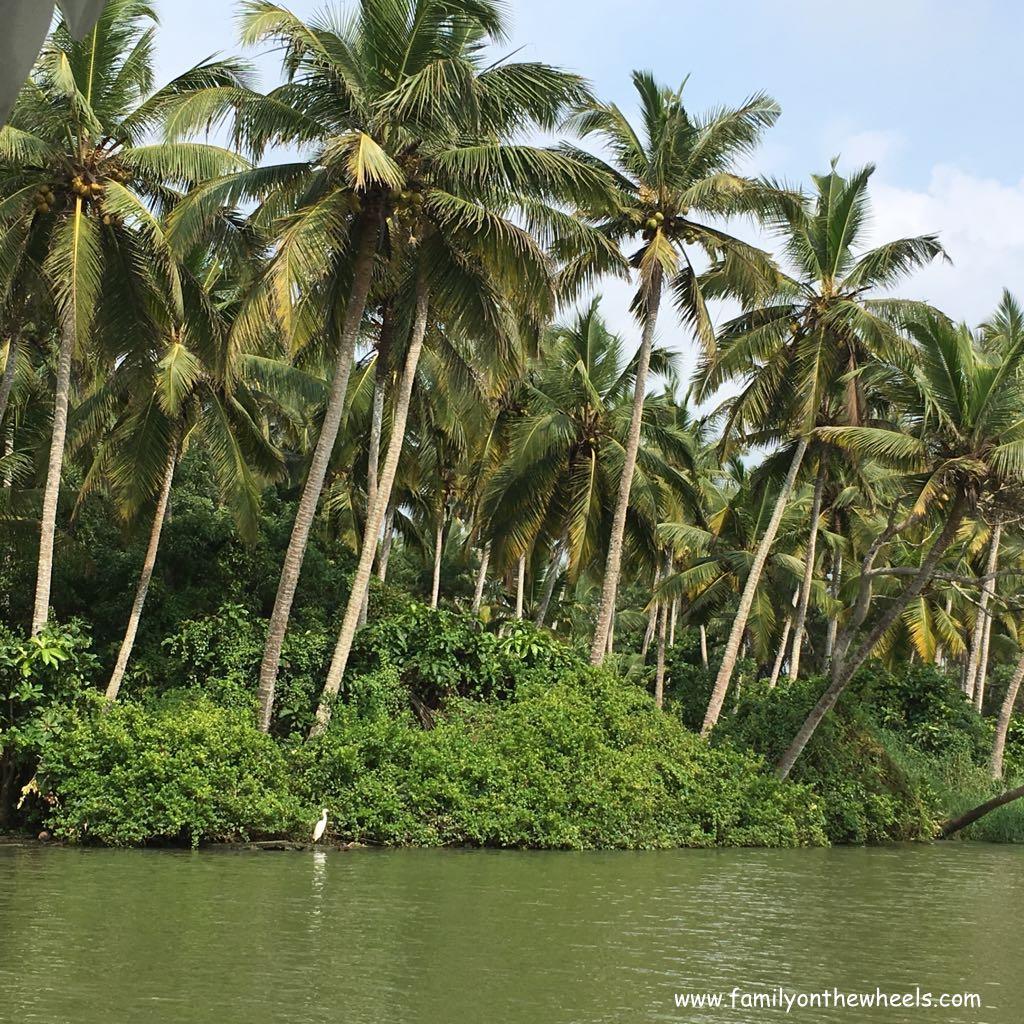 Poovar Islands : Place To Visit Near Trivandrum, Kerala