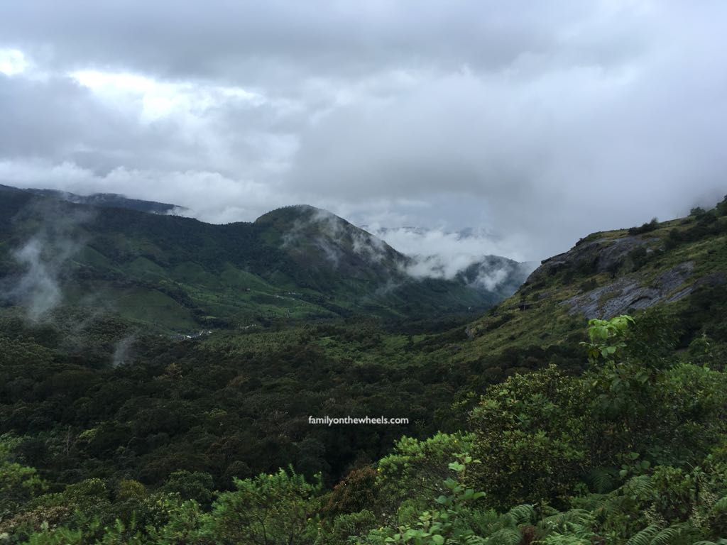 A Travel guide for Rajamalai National Park , Eravikulam National Park, Munnar, kerala by family travel bloggers